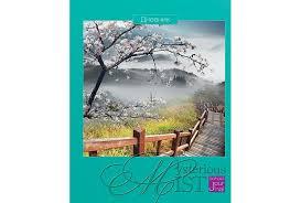 <b>Апплика Дневник для</b> старших классов Пейзаж 48 листов ...
