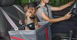 9 Best <b>Car</b> Seats for <b>Dogs</b>: 2019