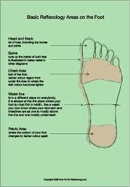 reflexology foot map  diagrams  amp  charts including step by step    reflexology foot map  diagrams  amp  charts including step by step instructions