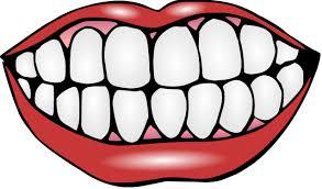 Bildresultat för tänder
