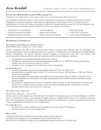sample sales executive resume example template 1000 images about it operations analyst resume sample it account hr analyst resume