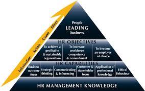 human resource management assignment help hrm homework help human human resource management assignment help human resource management homework help communications dissertation help