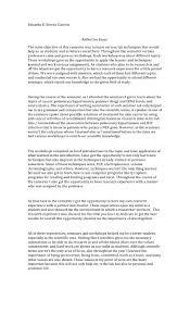 in a reflective essay you should  essay example reflective memo example