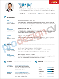 prodesign cv how to order your new professional cv format