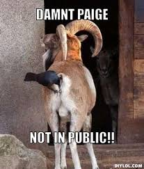 Goats are awesome - share your love of goats! - Page 15 - The ... via Relatably.com