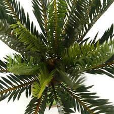 Другие производители <b>пальма</b> дерево цветочный декор ...