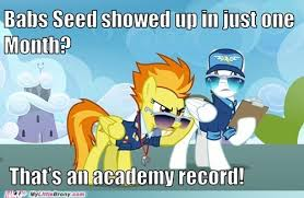My Little Brony - Brony Memes and Pony Lols - Vote - my little ... via Relatably.com