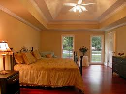 unique trey ceiling with flush bedroom colors brown furniture