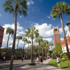university of florida admissions skip navigation