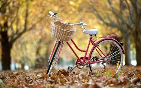 Resultado de imagem para bicycle