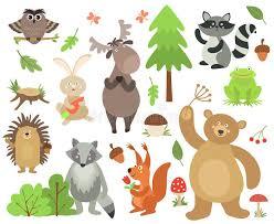 <b>Raccoon</b> Hedgehog Stock Illustrations – 1,153 <b>Raccoon</b> Hedgehog ...