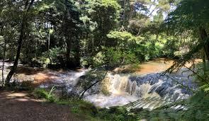 Waitakaruru Stream