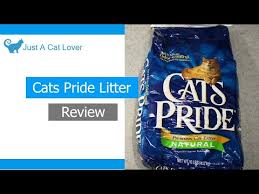 <b>Kit Cat Zeolite</b> Charcoal - Cat Litter Review - YouTube