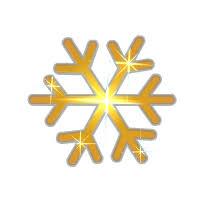 <b>Golden Snowflake</b> | Dofus Wiki | Fandom