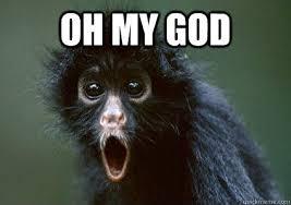 Oh my god - Monkey Omg - quickmeme via Relatably.com