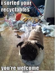 Messy Memes   Funny Messy Pictures   MEMEY.com via Relatably.com