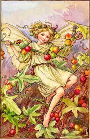 Meet The Fairies - <b>Flower Fairies</b>