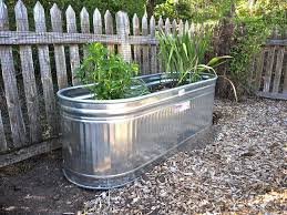 galvanized water trough planters nifty homestead a behlen water tank used as a planter