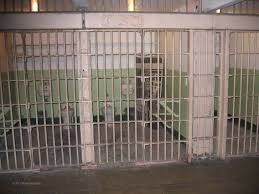 how do you evaluate success of peacemaking ken strongman esq alcatraz camp site