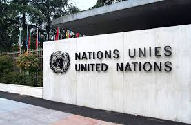 united nations essay thesis sludgeport web fc com role of the united nations essay