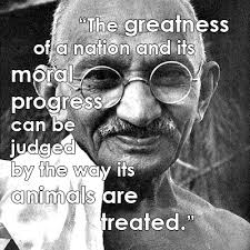 Famous Animal Rights Quotes | Blog | peta2.com
