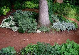 Small Picture Shade Garden Ideas pueblosinfronterasus