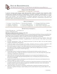 doc career advice to improve your resume the summary executive summary example resume template