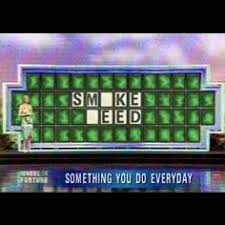 Mari-Memes on Pinterest | Medical Marijuana, Weed and Cannabis via Relatably.com