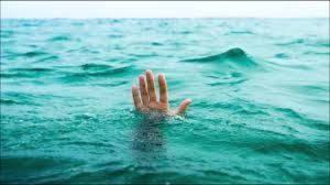 Image result for not waving but drowning stevie smith