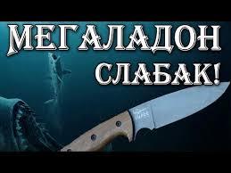 <b>Нож Shark</b> от Кизляр Суприм (<b>Shark knife</b> from Kizlyar Supreme ...