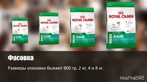 Обзор <b>корма Royal Canin</b> Mini <b>Adult</b> - YouTube