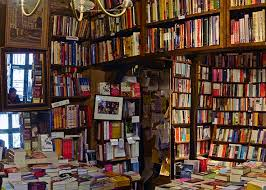Image result for novels