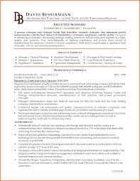 examples of executive resumes executive resume template executive c level executive resume example by xiuliliaofz