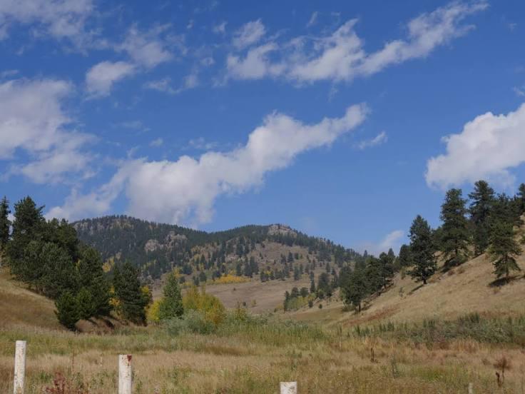 SMALL APPLIANCE REPAIR Jefferson County, CO