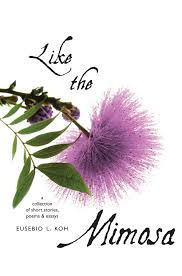 like the mimosa a collection of short stories poems essays ynwp like the mimosa a collection of short stories poems essays