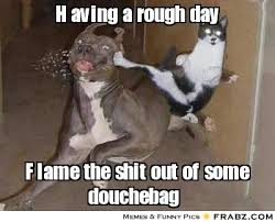 Having a rough day... - Cat Fu Meme Generator Captionator via Relatably.com