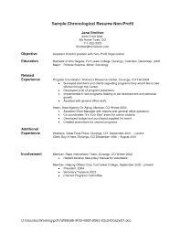 resume template example adjective for experience how to write a 81 terrific example of a great resume template