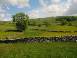 Image result for rock wall field