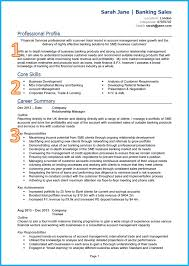 example of a good cv s cv cv template