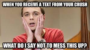 text from crush memes | quickmeme via Relatably.com
