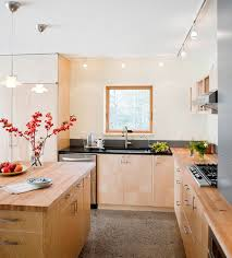 kitchen track lighting pictures. view in gallery asian themed kitchen eliminates any possible dull corners using track lighting pictures