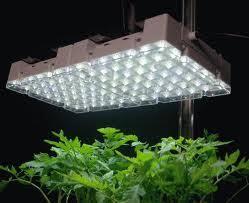 grow lights artificial lighting set