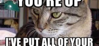 FunniestMemes.com - Funniest Memes - [I'm Glad You're Up. I've Put ... via Relatably.com