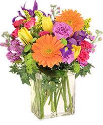 <b>Happy</b> Birthday <b>Flowers</b> Belton SC | SOUTHERN <b>TWIST FLORAL</b> ...