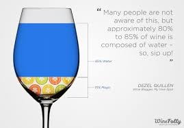 world s drunkest job wine wine folly top wine spill the juice on writing about wine