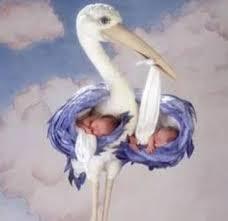 Resultado de imagem para Cegonha com Bebês