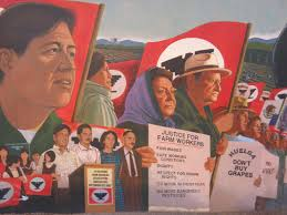 fighting for farm workers rights cesar chavez the delano grape message and audience