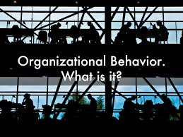 organizational behavior disney models of organizational behavior by shlomielandesman models of organizational behavior by shlomielandesman
