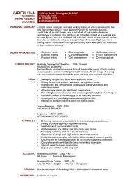 business development manager cv template  managers resume    business development manager cv template
