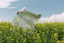 Man reading a map lost among <b>flowers field by</b> Blue Collectors ...